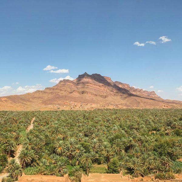 travel-to-morocco-8-days-agdz